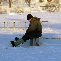 И мороз ему не страшен! :: Вера Щукина