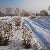 Чистая дорога в новый год ведёт... :: Александр Попов