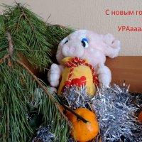 С наступившим Новым Годом!!!! :: bemam *