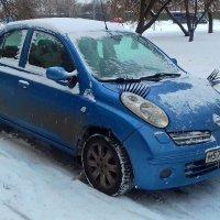 Замерзающая красавица... :: Николай Дони