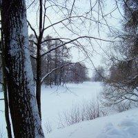 Пейзаж. :: Miko Baltiyskiy