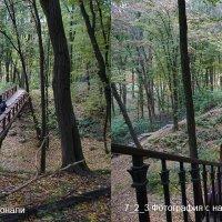 7_2_3 Фотографии построенные по принципу диагонали и с его нарушением :: Алексей Епанешников