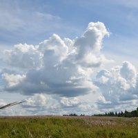 облака :: Sasha Chernova