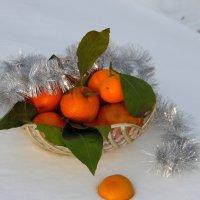Запах Нового Года. :: nadyasilyuk Вознюк