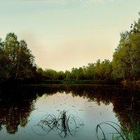 Тихий вечер на озере :: Иван Миронов