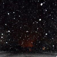зимняя ночь :: Евгений Фролов