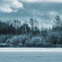 Студеный день. :: Svetlana