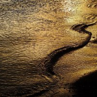 Финский залив поздним вечером :: Андрей Кротов