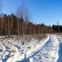Зима :: Милешкин Владимир Алексеевич