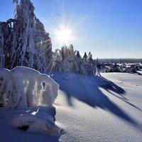 Мороз и солнце :: Анатолий