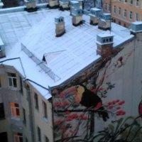 Вид с крыши на расписную стену. (Лофт Проект ЭТАЖИ в СПб) :: Светлана Калмыкова