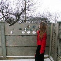 суровая зима :: Роза Бара