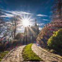 Вечное сияние чистого разума :: Alena Kramarenko