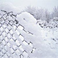 """Пушистый снег"" :: Татьяна Королёва"