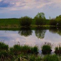 Вечер на озере :: Александр Березуцкий (nevant60)