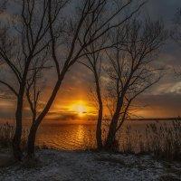Сказочный декабрьский вечер 2015 :: Юрий Клишин