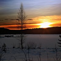 Зимняя сказка :: Larisa Ulanova
