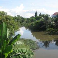 Таиланд. Деревня в провинции Трат. :: Лариса (Phinikia) Двойникова
