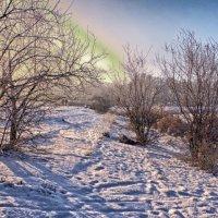 начало зимнего дня.. :: юрий иванов