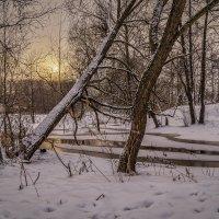 Четвёртый день нового года 2 :: Андрей Дворников