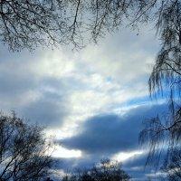 Небо января :: Tatjana