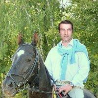 На коне. :: Miko Baltiyskiy