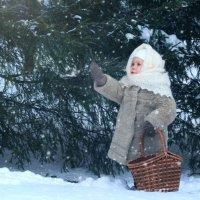 В лесу :: Светлана Орешко