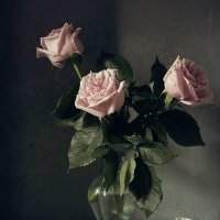 Three roses in the moonlight :: Татьяна Карачкова