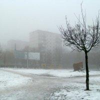 Туманным днём :: Сергей Тарабара