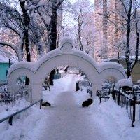 Выход в город :: Вера Щукина