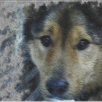 друг :: Юлия Денискина