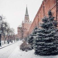 Московский кремль :: Илья Сердитов