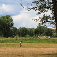 Когда деревья большие-пребольшие :: Екатерина Торганская