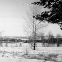 Зимы  картины...(ЧБ  вариант) :: Валерия  Полещикова