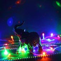 Праздник - он и в Африке праздник! :: Юрий Гайворонский