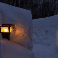Зимние тропинки :: Anatoliy Pavlov
