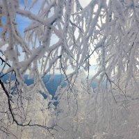 И зима бывает нежной :: Стил Франс