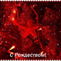 Первая звезда :: Татьяна Евдокимова