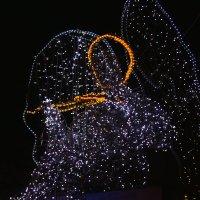 Ангел у Дворцовой площади :: Aнна Зарубина