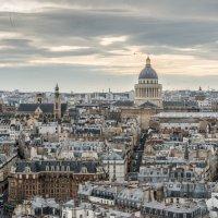 Париж,вид с Нотр-дама :: Наталия