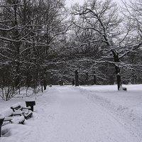 зимняя идилия :: Яков Реймер