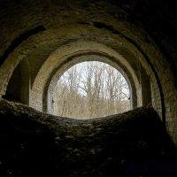 ...свет и жизнь в конце тунеля :: Инга Мысловская