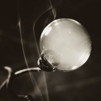 Мыльный пузырь... :: Olga Kramoreva