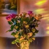 Розы декабря :: Евгения К