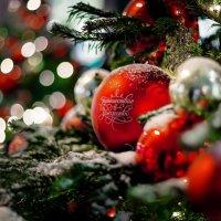 С Рождеством!! :: Александр Зенкин