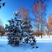 Сормовский парк :: lapin_valerei@mail.ru