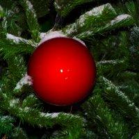 шарик в снегу :: Любовь Потравных