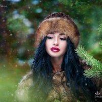 In winter forest :: Фотостудия Объективность