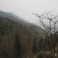 горы Силин :: Pavel Shardyko