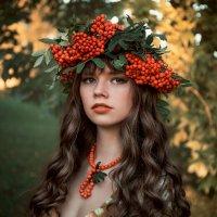 Осень в гости к нам пришла... :: Elena Klimova